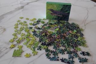 Parenting Puzzle